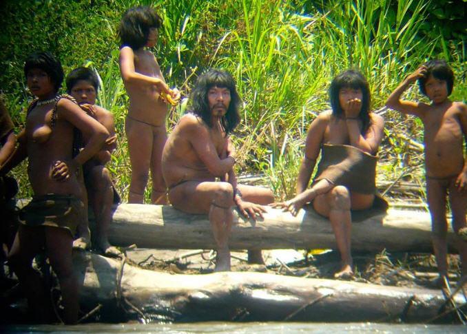 Décidément, l'Amazonie est loin d'être le paradis tant vanté…