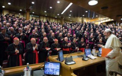 François et les synodes
