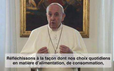 Le Pape: « Prions pour un monde 'éco-durable' »